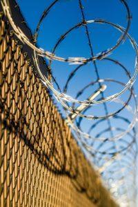 probation violation