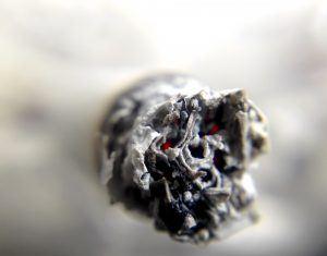 Malamut Photo cigarette-- Marijuana Laws NJ
